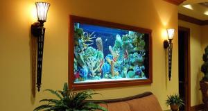 akvarium-po-fen-shuj-doma
