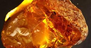 jantar'-kamen'-magicheskie-svojstva