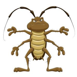 снится таракан