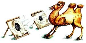 к чему снится плюющийся верблюд