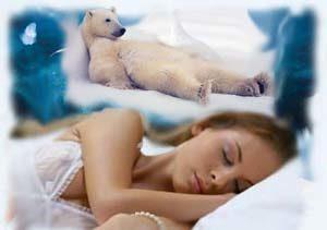 к чему снится белый медведь